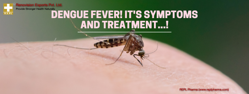 Dengue-Fever-Its-Symptoms-and-Treatment